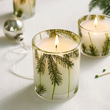 Picture of Thymes Frasier Fir Pine Needle Poured Candle