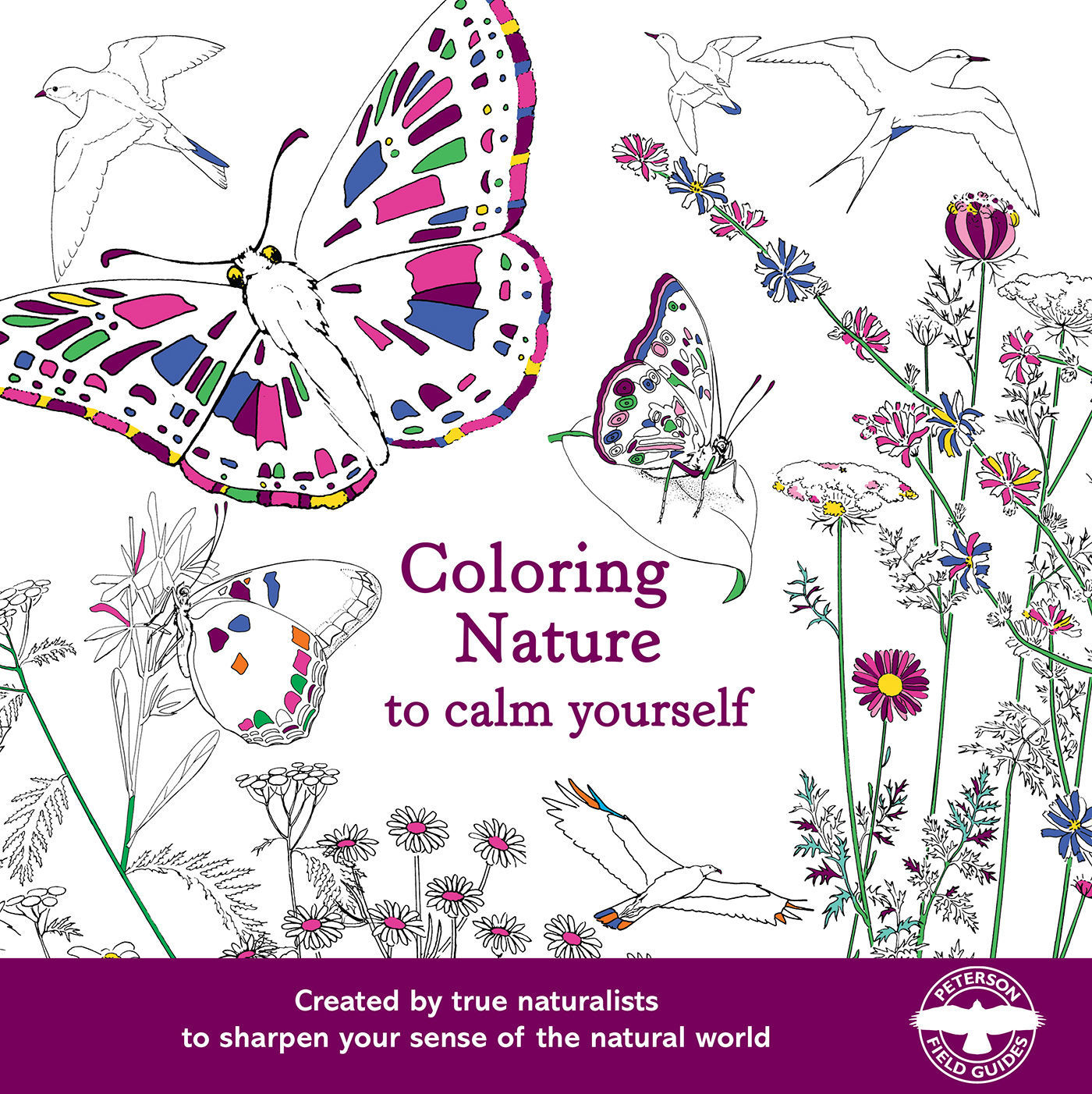Picture of Coloring Nature