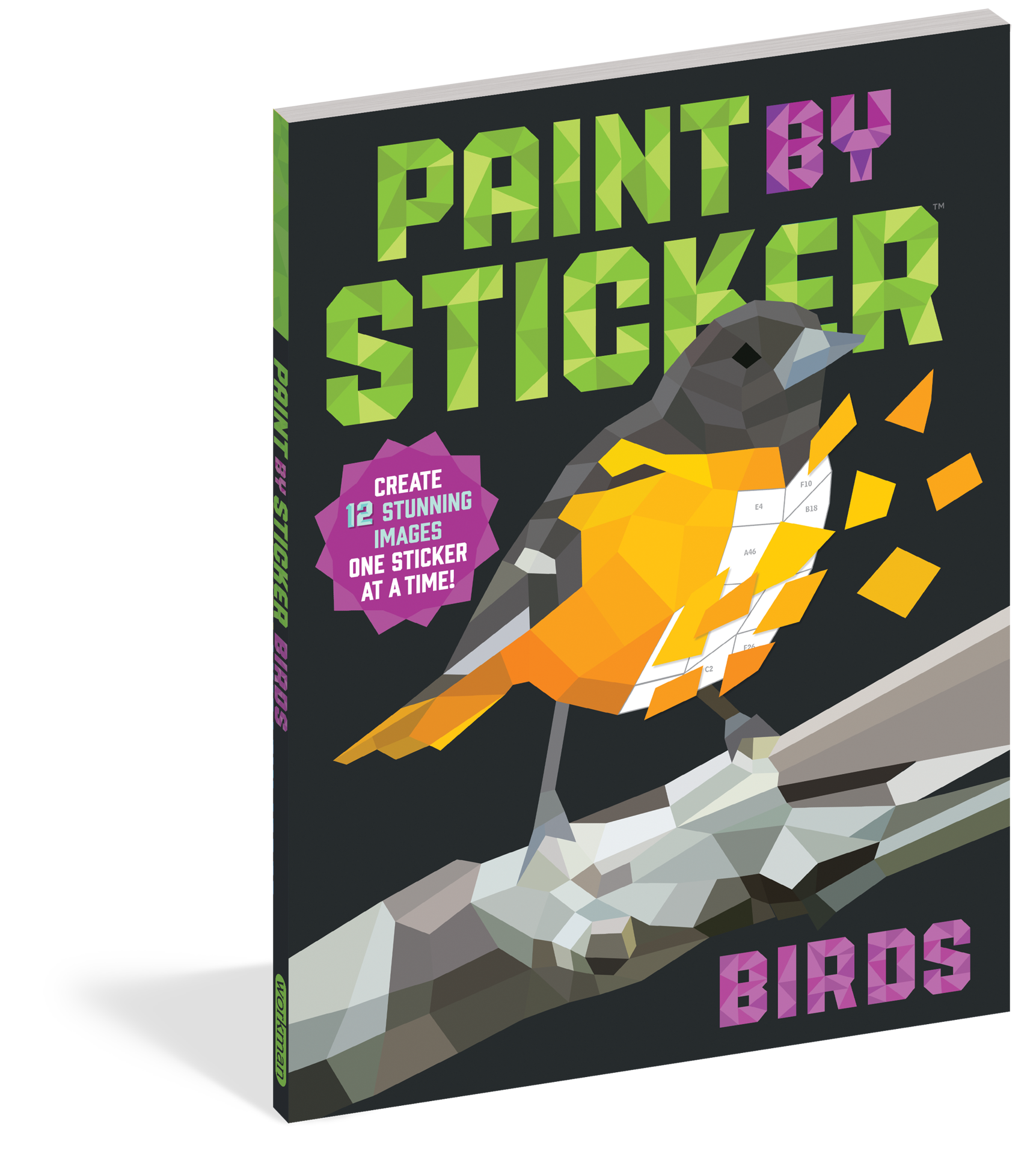 Picture of Paint By Sticker - Birds