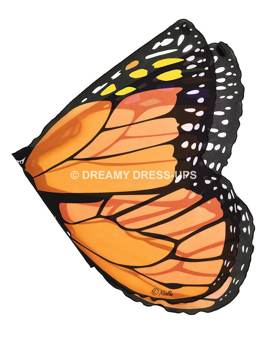 Picture of Butterfly Wings