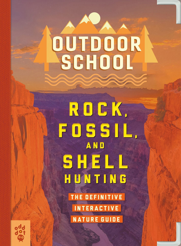 Picture of Outdoor School - Rock, Fossil & Shell Hunting Book